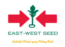 PT. East West Seed Indonesia